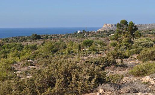 Земля в Айя-Напе (Кипр)