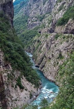 Каньон Тары в Черногории